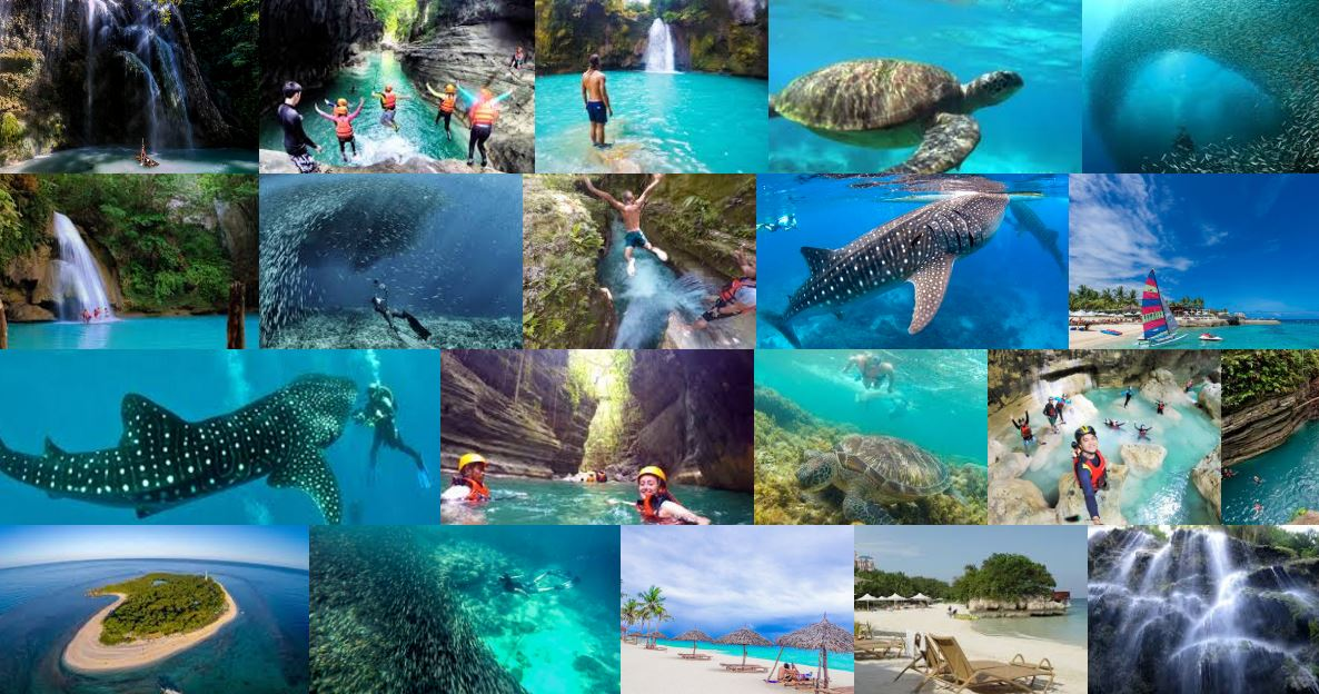 The Best of Cebu