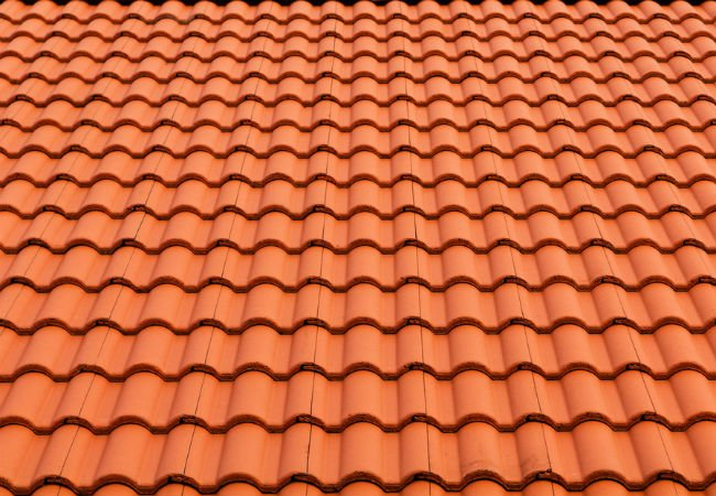 Clay or Concrete roofing