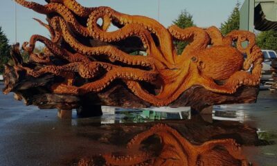 Gig Harbor Chainsaw Artist Turns Fallen Redwood into Giant Sea Octopus
